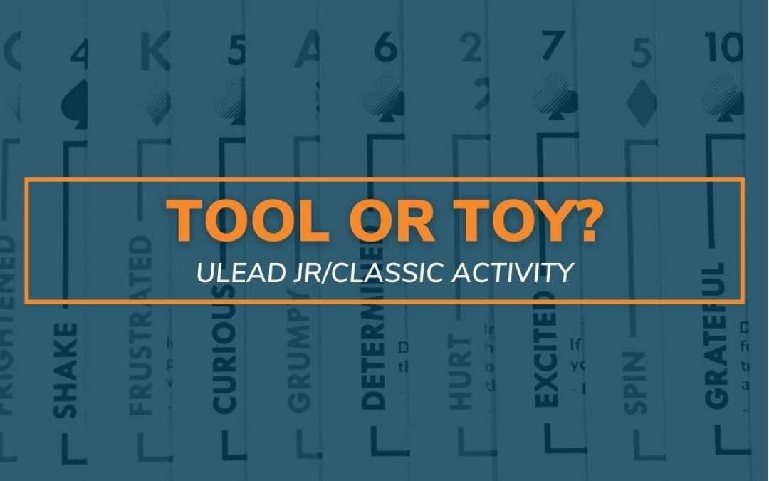 Tool or Toy?